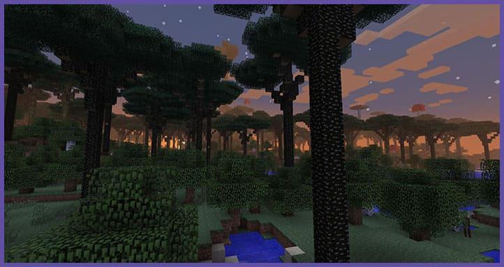 Сумеречный лес