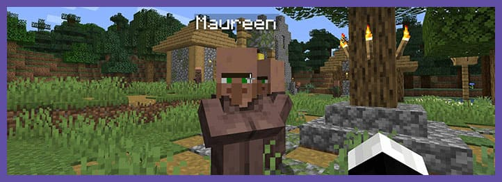 Мод Villager Names